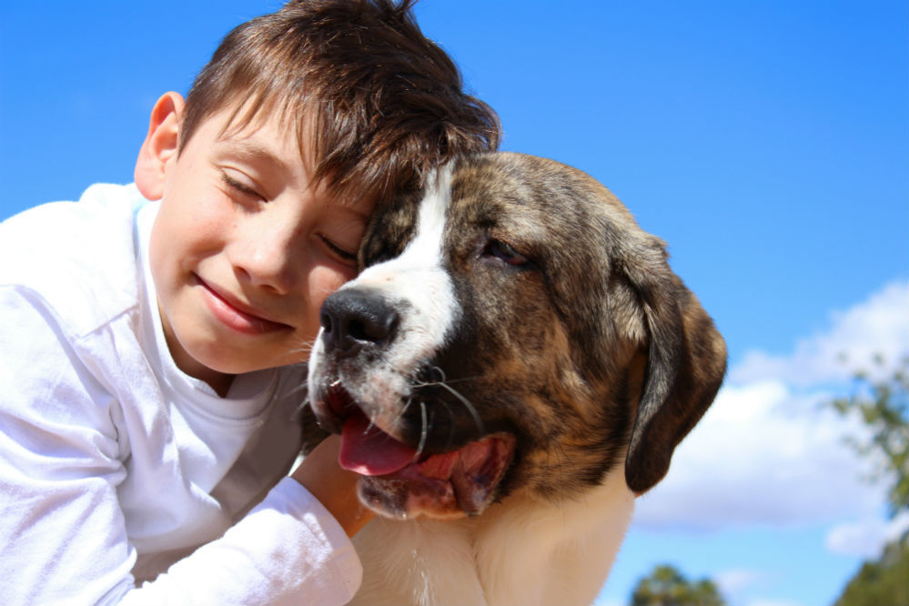 Best Dogs for Kids: The Favorite Family-Friendly Breeds